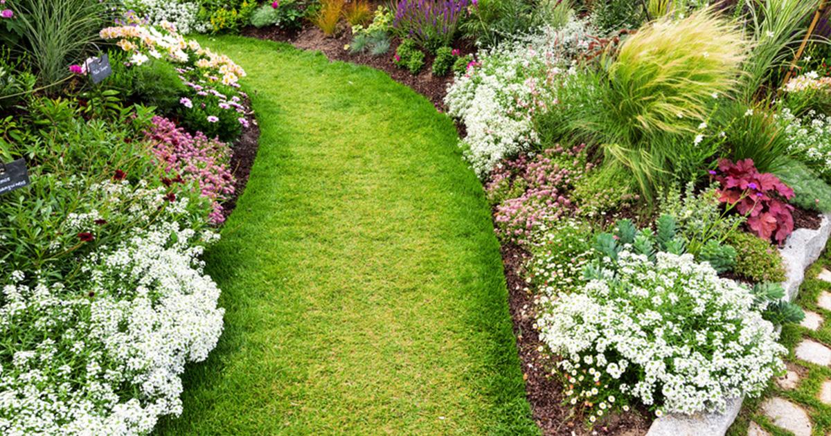 plate bande jardin calcaire | Blog Piscine & Jardin