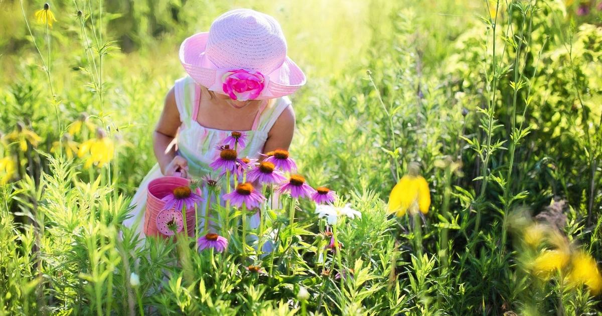 plantations-printemps