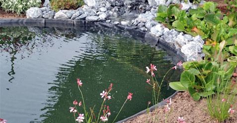 bassin-aquatique-classique
