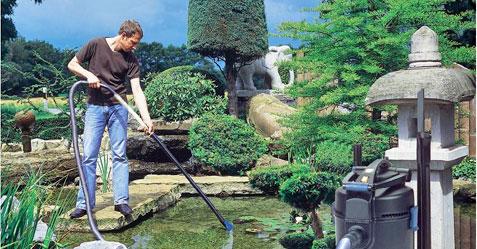 bassin-entretien-renovation