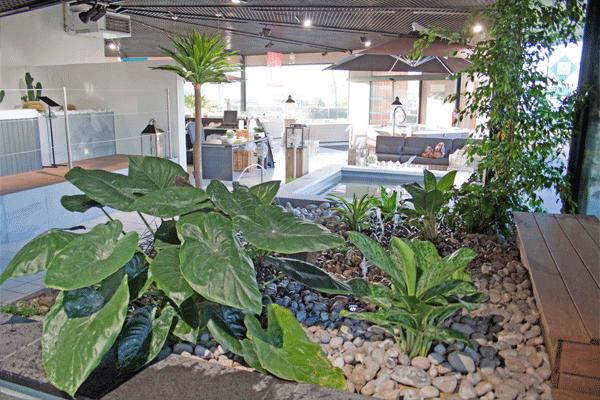 Paysagiste création de jardin et bassin à Lille