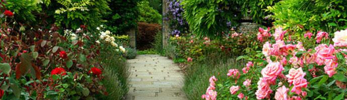 Jardin contemporain fran ais anglais japonnais le for Creation jardin anglais