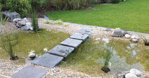 jardin-menu-bassin