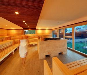sauna professionnel collectif