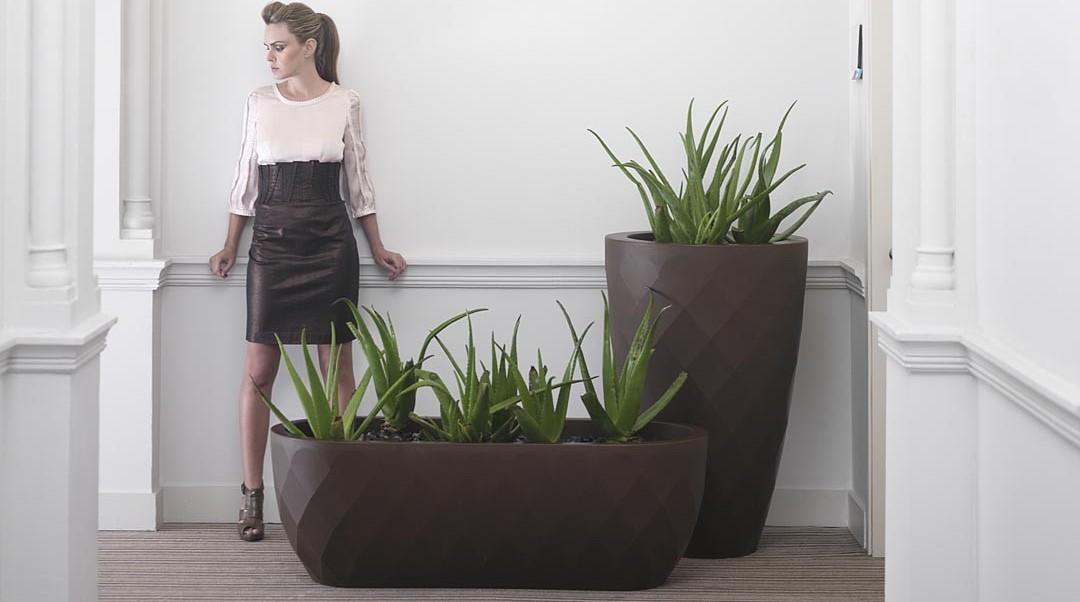 d couvrez nos pots et jardini res dans nos boutiques du nord. Black Bedroom Furniture Sets. Home Design Ideas