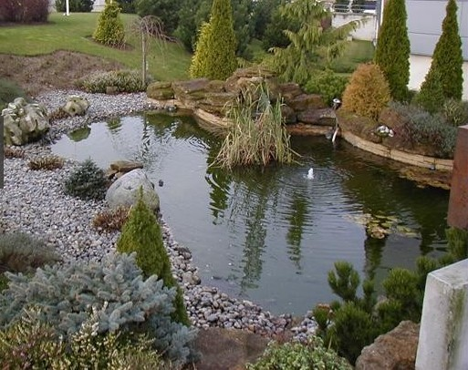 Bassin piscine et jardin - Piscine bassin naturel tours ...