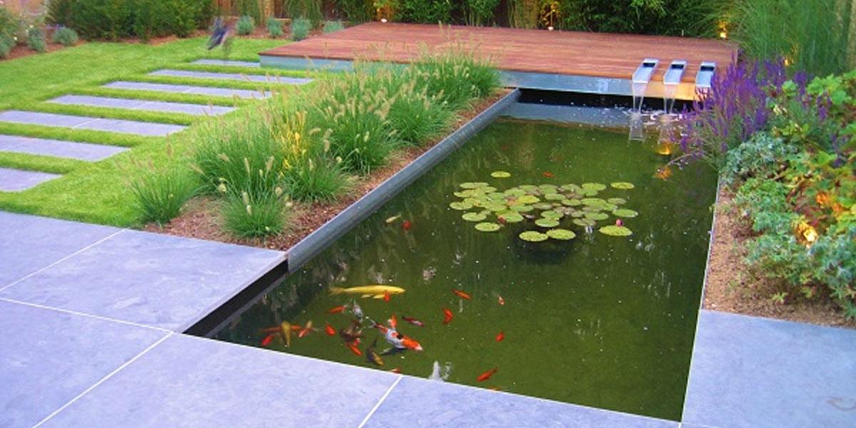 Construction d'un bassin aquatique avec pierre bleue et bois